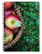 Fresh Picked Apples Spiral Notebook