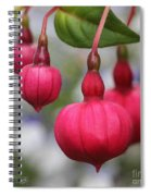 Fuchsia Named Dark Eyes Spiral Notebook