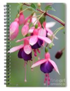 Fuchsia Named Lambada Spiral Notebook