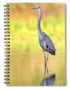 Gbh At First Light Spiral Notebook