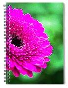 10188 Purple Gerbera Spiral Notebook