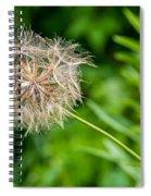 Goat's Beard Spiral Notebook