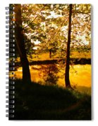 Golden Pond 3 Spiral Notebook