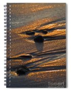 Golden Sand  Spiral Notebook