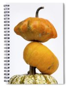Gourds And Pumpkins Spiral Notebook