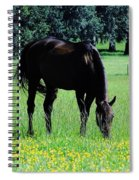 Grazing Horse In The Flowers Spiral Notebook