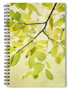 Green Foliage Series Spiral Notebook