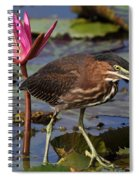 Green Heron Photo Spiral Notebook