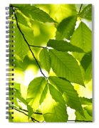 Green Spring Leaves Spiral Notebook