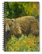 Grizzly Study 2 Spiral Notebook
