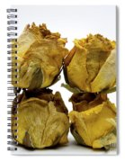 Heap Of Wilted Roses Spiral Notebook