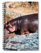 Hippopotamus In River. Serengeti. Tanzania Spiral Notebook