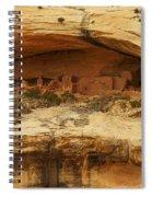 Horse Collar Ruins Spiral Notebook