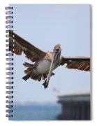 Incoming Pelican Spiral Notebook