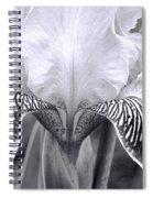 Iris 11 Spiral Notebook
