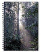 Jedediah Smith Redwoods State Park Redwoods National Park Del No Spiral Notebook