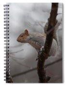 Jumping Squirrel Spiral Notebook