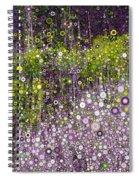 Just Beyond Emerald City Spiral Notebook