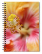 Ko Aloha Makamae E Ipo Aloalo Exotic Tropical Hibiscus Maui Hawaii Spiral Notebook
