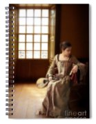 Lady In 16th Century Clothing With A Mandolin Spiral Notebook