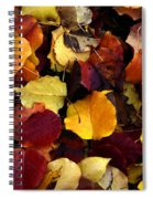 Leaves Of Autumn Spiral Notebook