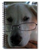 Liberty The Professor Spiral Notebook