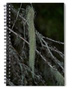 Lichen Spiral Notebook