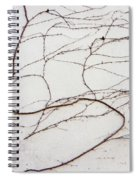 Life Lines Spiral Notebook