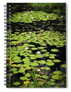 Lily Pads On Dark Water Spiral Notebook