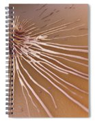 Macrophage Fighting Bacteria Spiral Notebook
