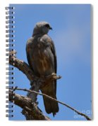 Merlin Falcon  Spiral Notebook