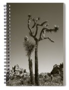 Joshua Tree National Park Landscape No 2 In Sepia Spiral Notebook