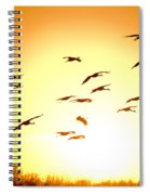 Migration Spiral Notebook