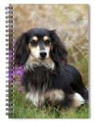 Miniature Long-haired Dachshund Spiral Notebook