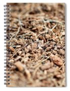 Mulch Spiral Notebook