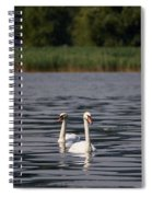 Mute Swans. Lago Di Iseo Spiral Notebook