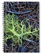 Natural Art Spiral Notebook