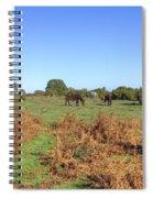 New Forest Spiral Notebook