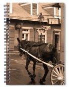 New Orleans - Bourbon Street Horse 3 Spiral Notebook