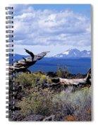Newberry Lava Beds Spiral Notebook