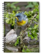 Northern Parula Spiral Notebook