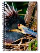 On The Nest Spiral Notebook
