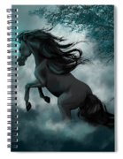 Only Dreams Remain Spiral Notebook