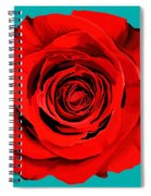 Painting Of Single Rose Spiral Notebook