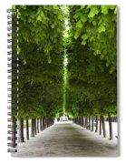 Palais Royal Trees Spiral Notebook