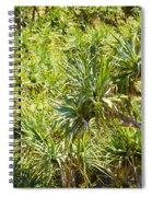 Pandanus Palm Tree Spiral Notebook