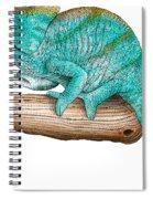 Parsons Chameleon Spiral Notebook
