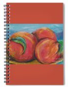 Peaches Spiral Notebook
