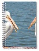Pelican Pals Spiral Notebook