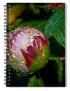 Peony With Rain Drops Spiral Notebook